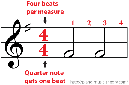 4/4 Time Signature Four beats per measure and a half note gets two beat