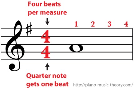 4/4 Time Signature Four beats per measure and a whole note gets four beats