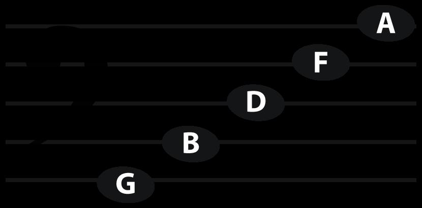 bass_line_notes